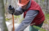 Miško darbininkas 1
