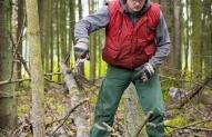 Miško darbininkas 2